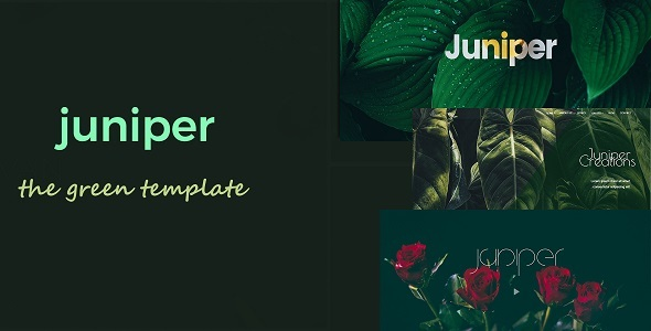 Juniper – Creative Multi Purpose Template