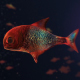 Lingering Semi-transparent Colorful Fish - VideoHive Item for Sale