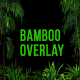 Bamboo Forest Overlay - VideoHive Item for Sale