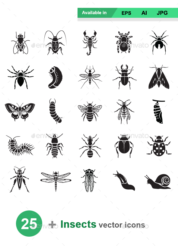 Insects Vector Icons - Animals Characters