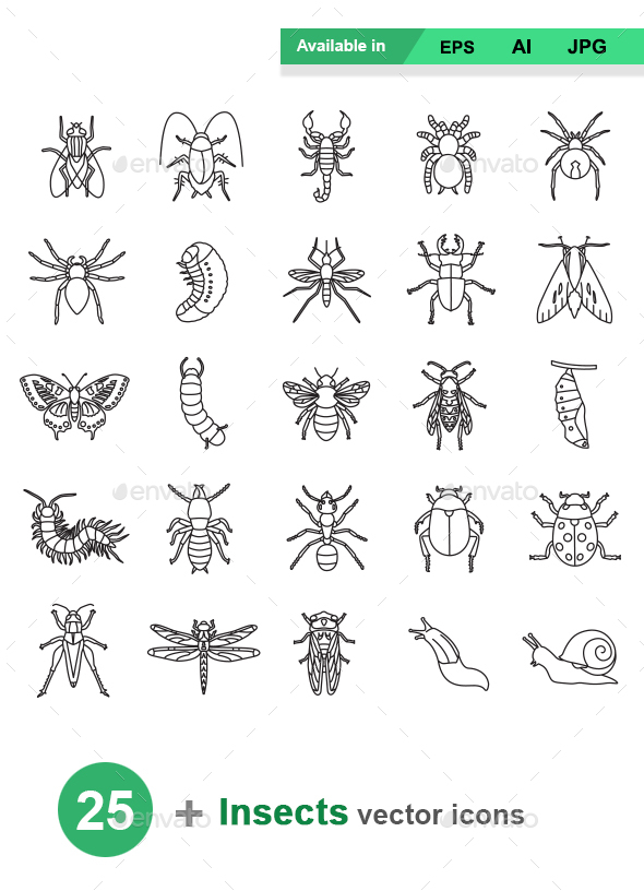 Insects Outlines Vector Icons - Animals Characters