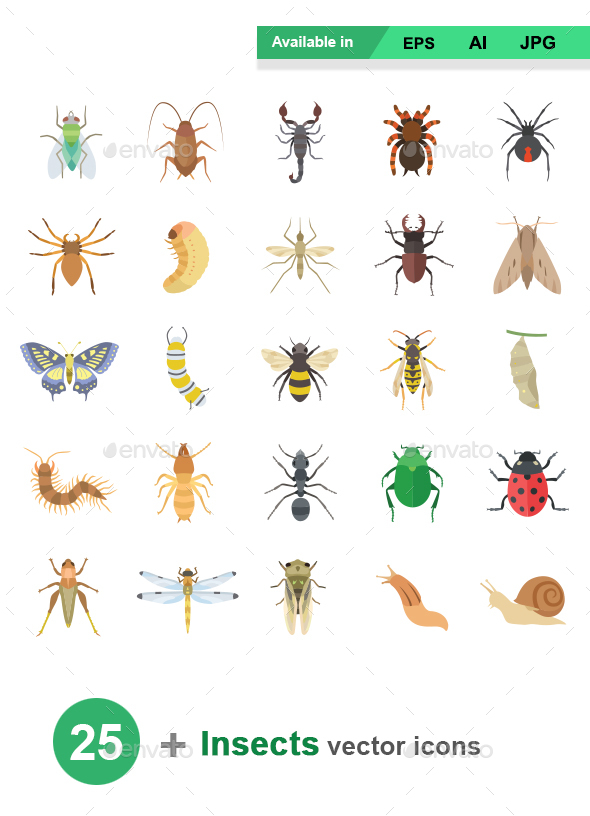 Insects Color Vector Icons - Animals Characters