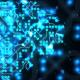 Digital Brain Network Activity - VideoHive Item for Sale