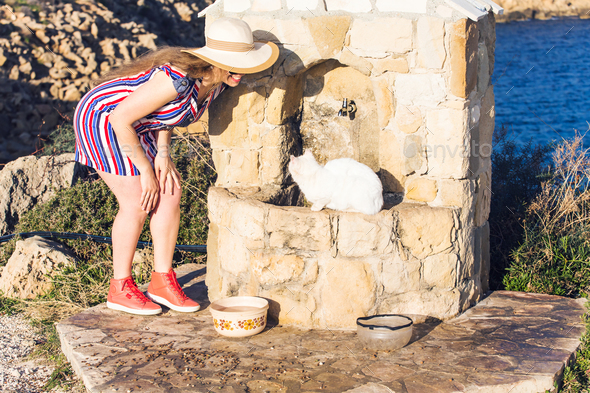 White Cat homeless and Woman playing with him Outdoor Lifestyle and Friendship helping concept