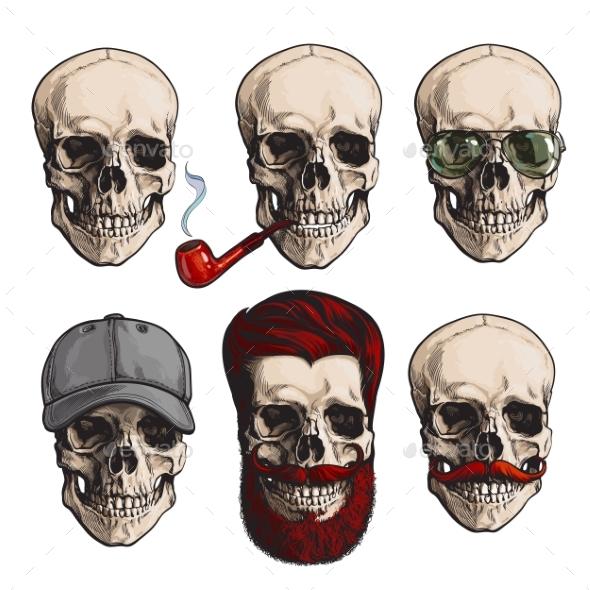 Human Skull Bones - People Characters