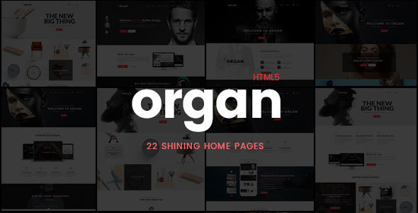 Organ – Creative Multi-Purpose Business, Finance HTML5 Responsive Website Template
