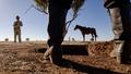 Cowboy Standoff low shot - PhotoDune Item for Sale