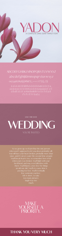 Yadon Sans Serif - Serif Fonts