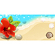 Sea Background with Red Hibiscus - GraphicRiver Item for Sale
