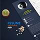 Blue Resume - GraphicRiver Item for Sale