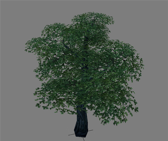 Game Model Arena - Variation grass flowers trees 03 01 - 3DOcean Item for Sale