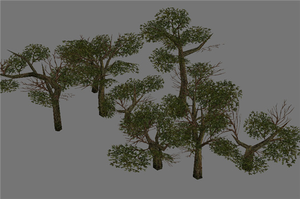 Game Model Arena - Variation grass flowers trees 06 01 - 3DOcean Item for Sale