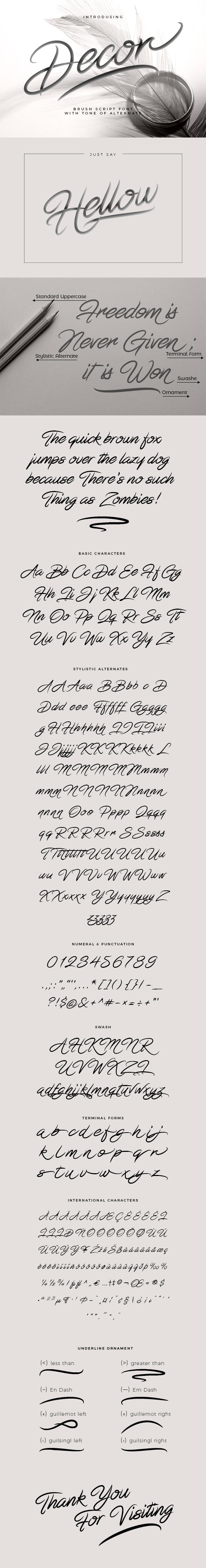 Decor Brush Script Font - Calligraphy Script