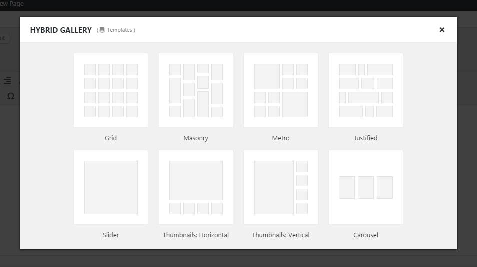 Hybrid Gallery | Visual Gallery Plugin for WordPress
