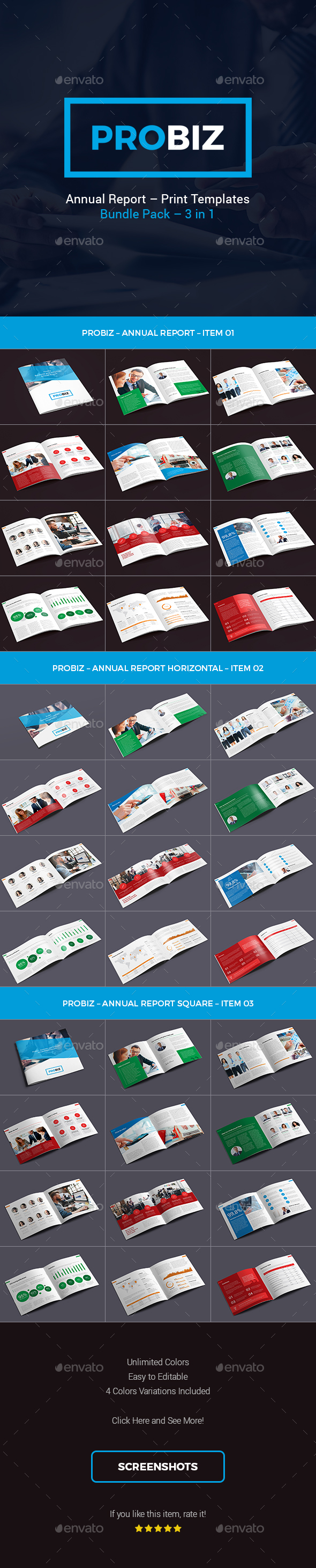 ProBiz – Business and Corporate Annual Report Bundle - Corporate Brochures