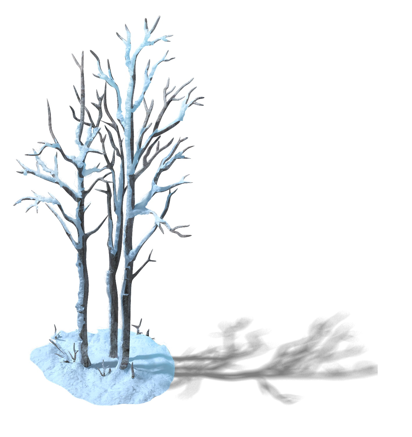 The game model of snow - white birch forest 01