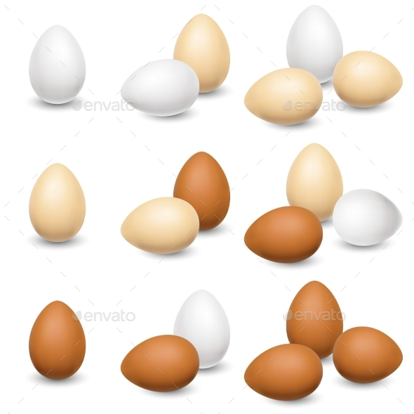 Egg Set on a White Background - Food Objects