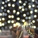 They Clink Glasses with Champagne - VideoHive Item for Sale