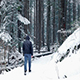 Man Walks On Path Through Woods In Snowfall - VideoHive Item for Sale