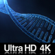 DNA Molecule Structure 4K - VideoHive Item for Sale