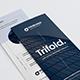Modern Clean Trifold