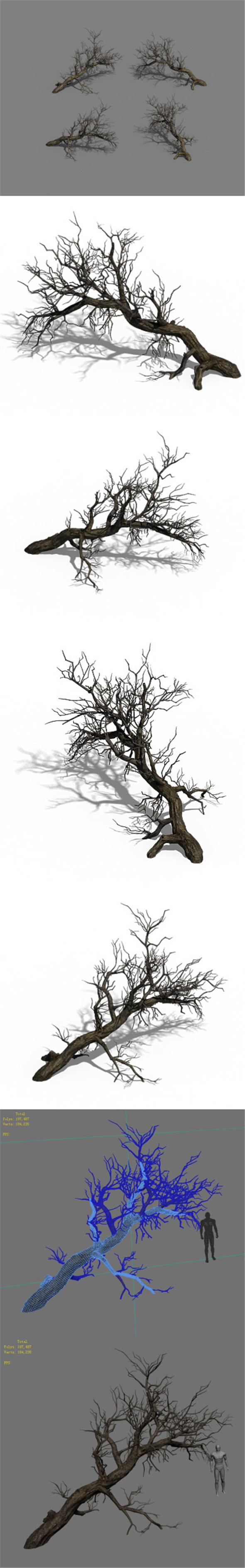 Winter snow - dead tree 02 - 3DOcean Item for Sale