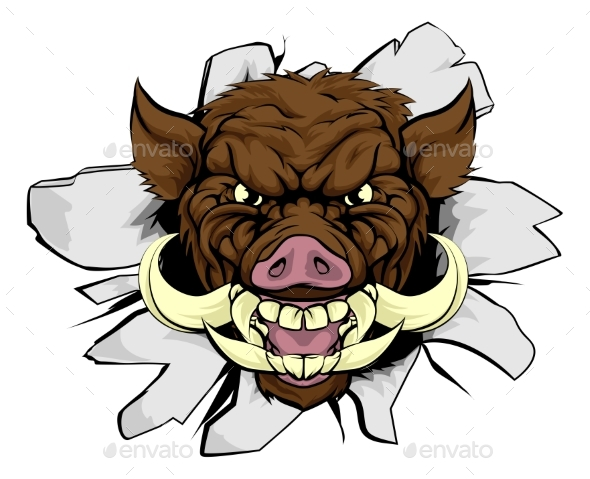 Boar Warthog Sports Mascot - Animals Characters