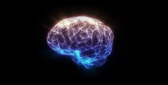Wire brain by yocreative videohive - Brain wallpaper 3d ...