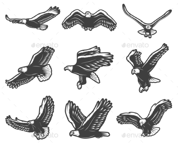 Vintage Flying Eagles Set - Animals Characters