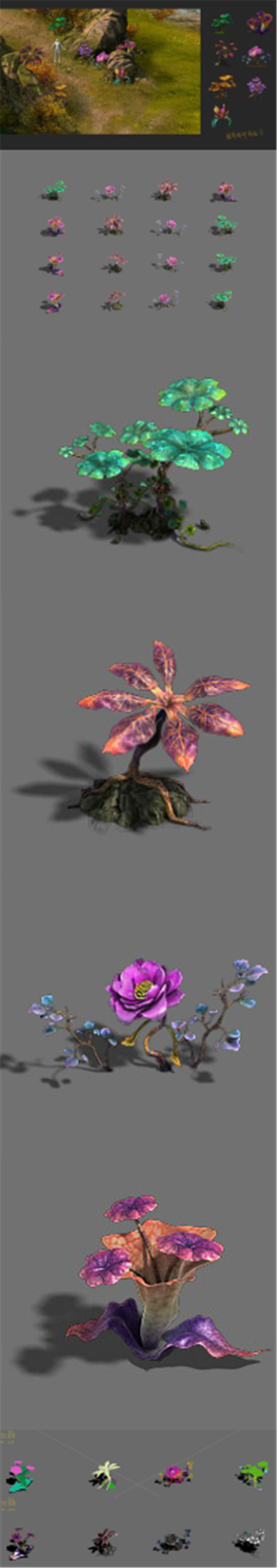 Exotic - flower 3 - 3DOcean Item for Sale