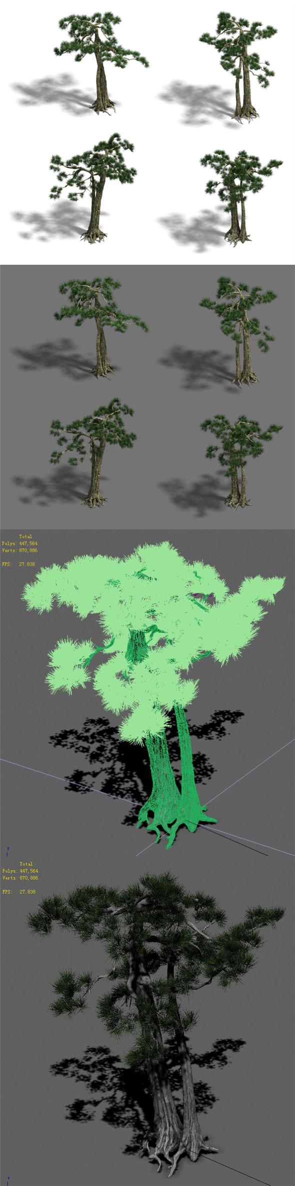 Strange - Pine 02 - 3DOcean Item for Sale