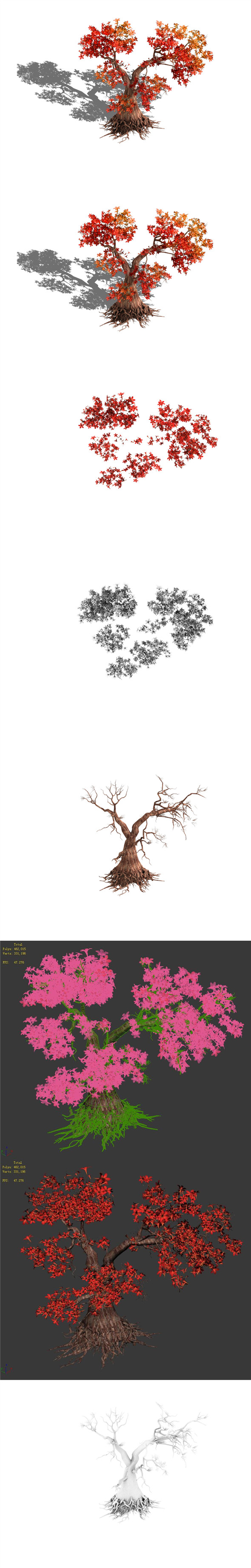 Forest - Maple Tree 19 - 3DOcean Item for Sale