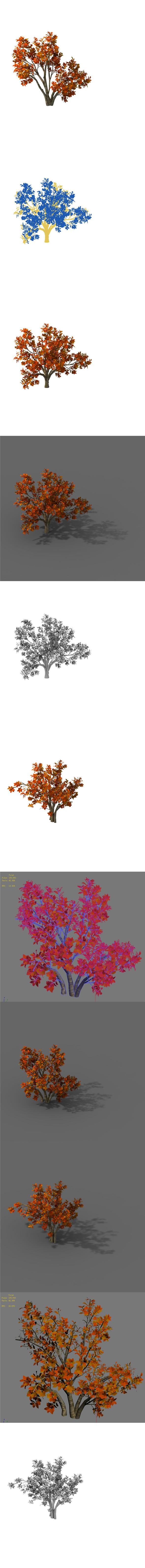 Plant - Shrub 01 - 3DOcean Item for Sale