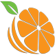 Spring Vibes Logo