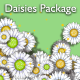 Daisies Package - VideoHive Item for Sale