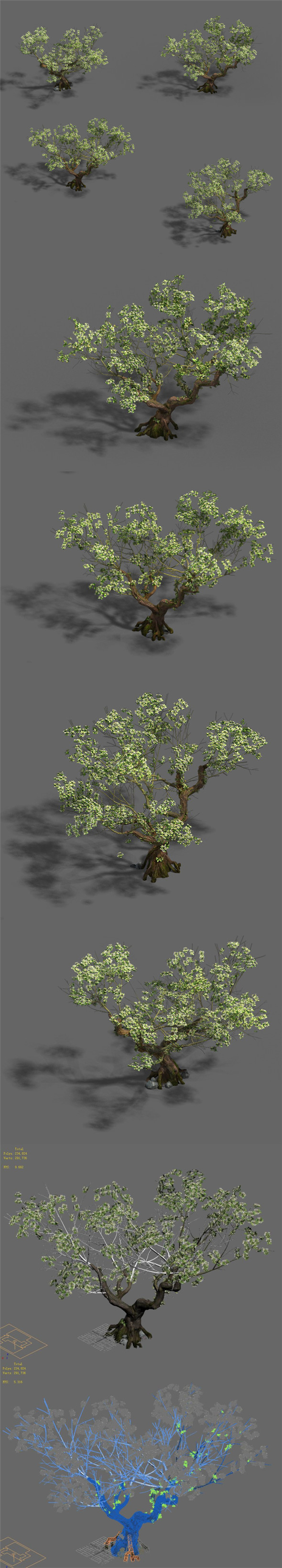Plant - pear tree - 3DOcean Item for Sale
