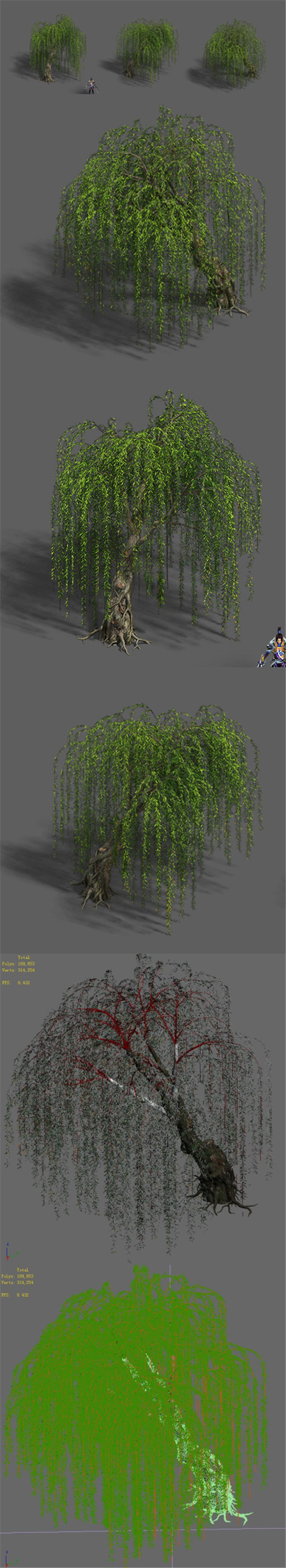 Plant - Willow 12 - 3DOcean Item for Sale