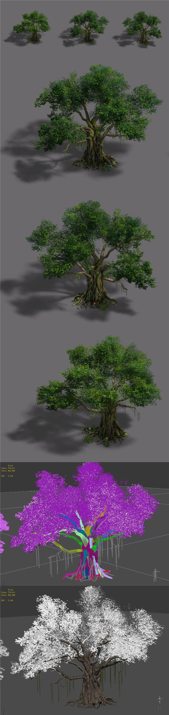 Plant - banyan tree - 3DOcean Item for Sale