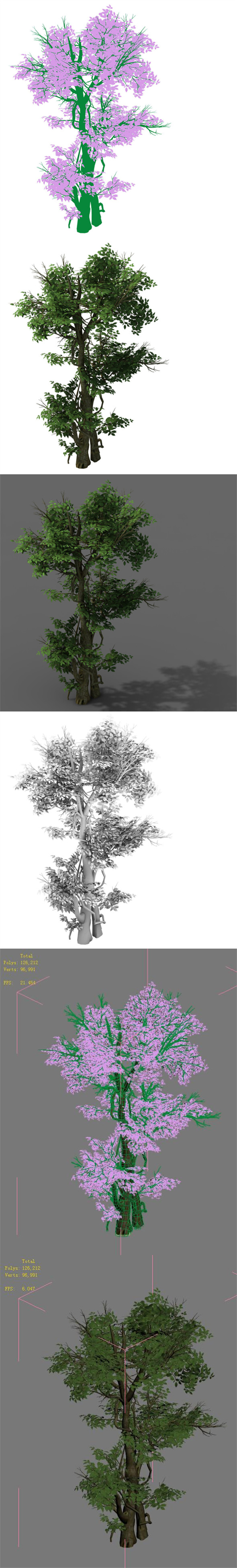 Plant - banyan tree 03 - 3DOcean Item for Sale