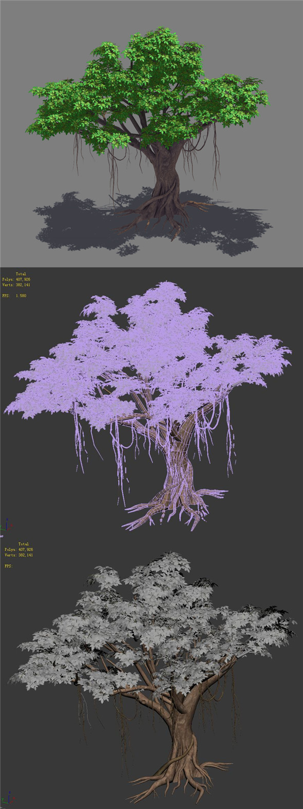 Plant - banyan tree 14 - 3DOcean Item for Sale