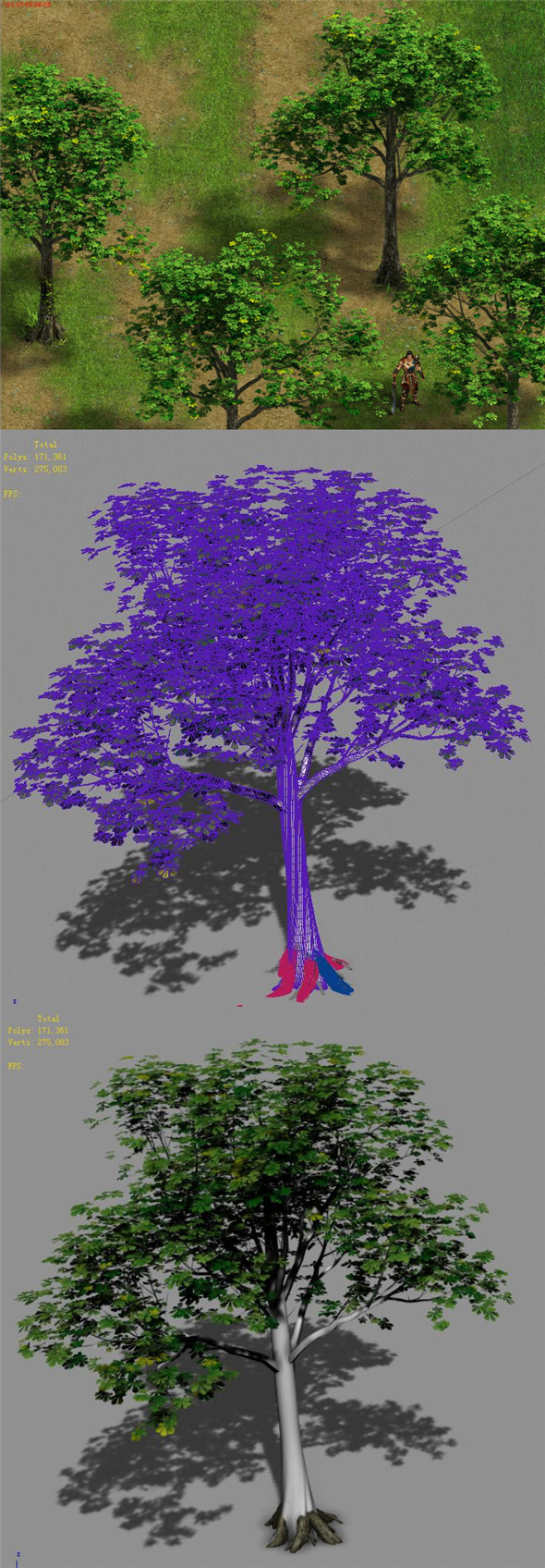 Plant - Tree 16 - 3DOcean Item for Sale