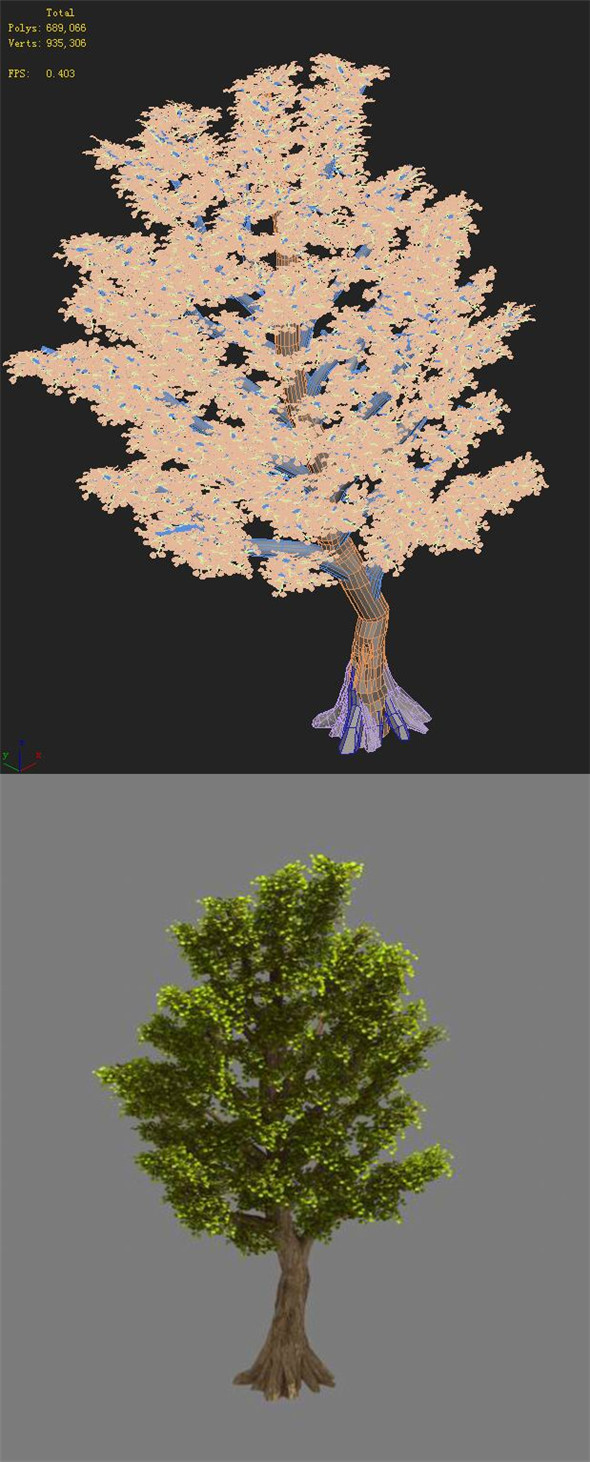 Plant - Ginkgo Tree 02 - 3DOcean Item for Sale