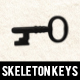 Skeleton Key Photoshop Brushes Pack