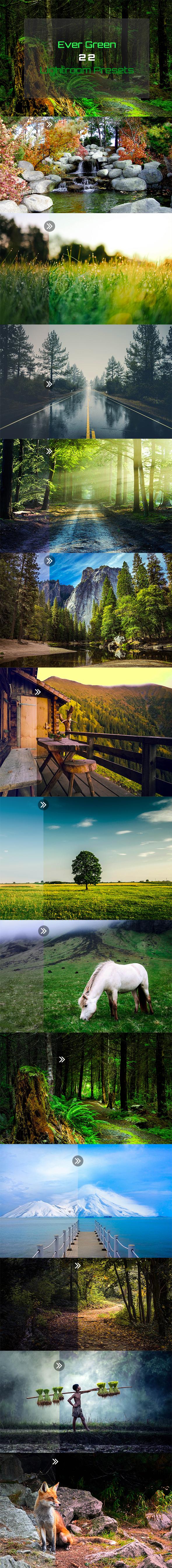 Ever Green 22 Lightroom Presets - Landscape Lightroom Presets