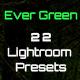 Ever Green 22 Lightroom Presets