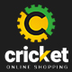 Ap Cricket Shopify Theme - ThemeForest Item for Sale