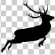 Stag Run Silhouette - VideoHive Item for Sale