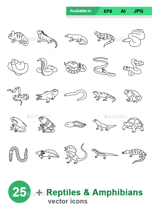 Reptiles & Amphibians Outlines Vector Icons - Animals Characters