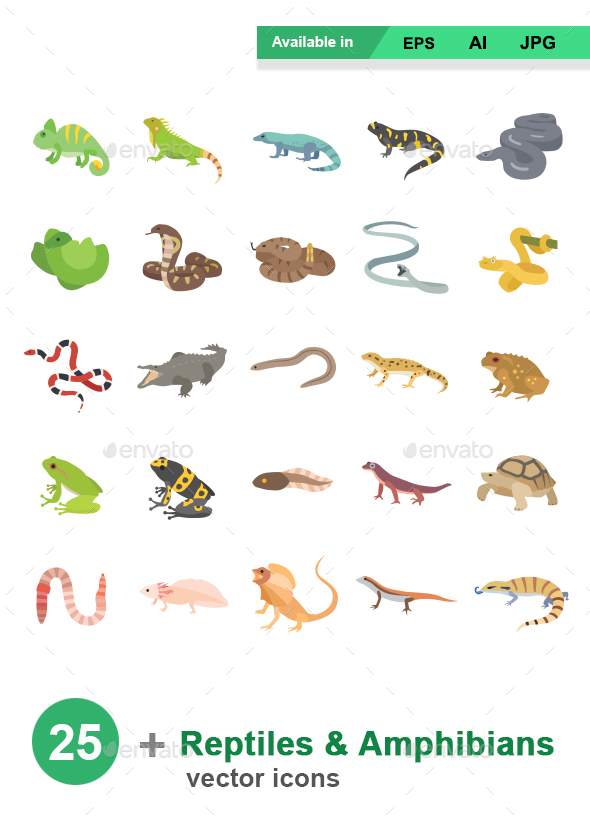 Reptiles & Amphibians Color Vector Icons - Animals Characters
