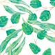 Watercolor Eucalyptus Twigs - GraphicRiver Item for Sale